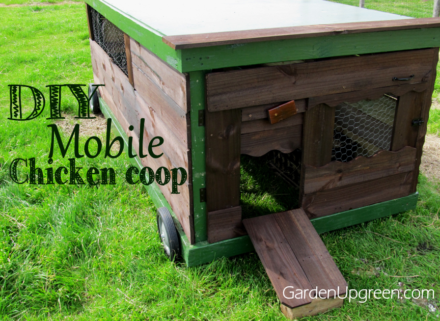 week10-DIY Mobile Chicken Coop 1
