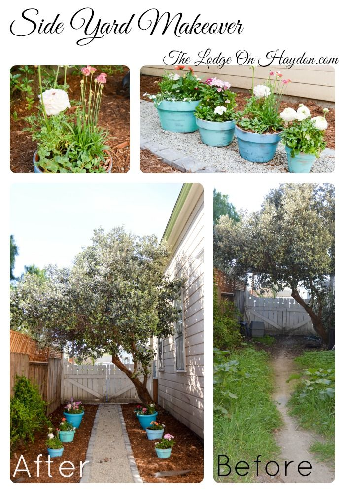 week9- side yard makeover