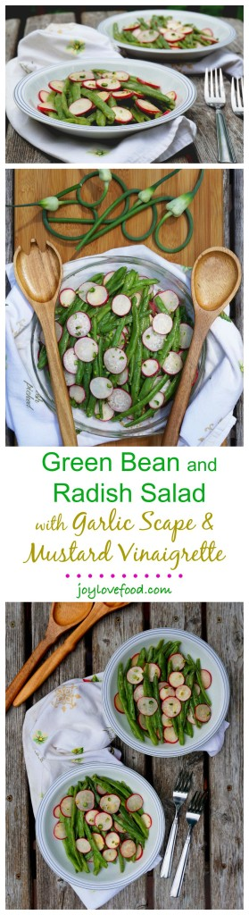 Fresh, vibrant and full of flavor, this Green Bean and Radish Salad with Garlic Scape & Mustard Vinaigrette is a delicious side dish for a summer barbeque. It is also great for a healthy lunch or snack.