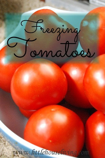 week29-howtofreezetomatoes