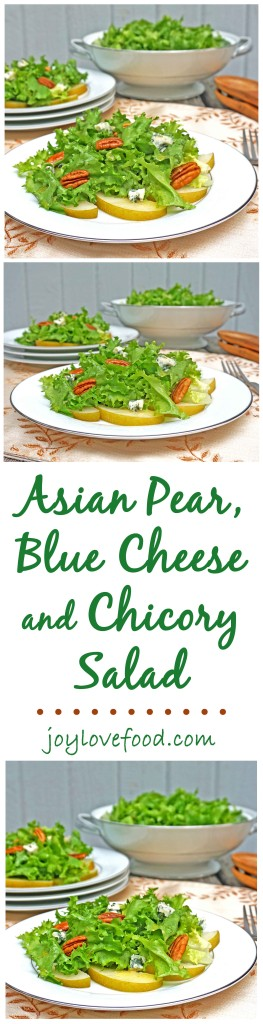 Asian Pear, Blue Cheese and Chicory Salad - full of flavor with a nice crunch, this delicious green salad is the perfect addition to your holiday table, or salad course for your next dinner party or anytime.