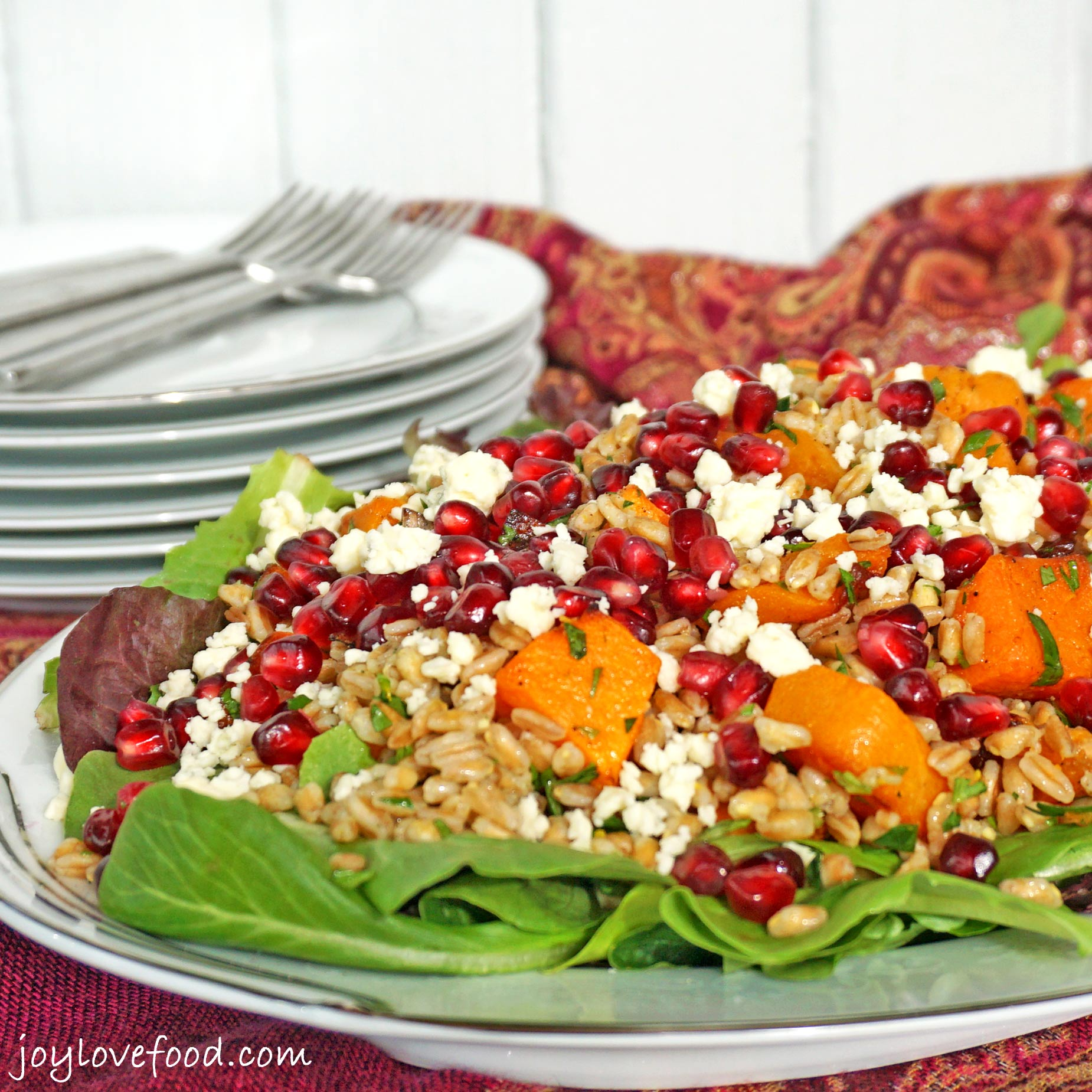butternut squash winter salad with kale farro and cranberry farro ...
