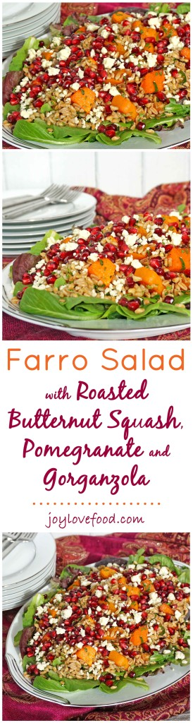 Farro Salad with Roasted Butternut Squash, Pomegranate and Gorgonzola - this colorful salad is full of flavor and so easy to prepare, perfect for a dinner party or a healthy lunch.